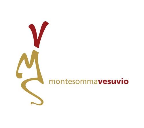 Azienda Agricola Vitivinicola Montesommavesuvio